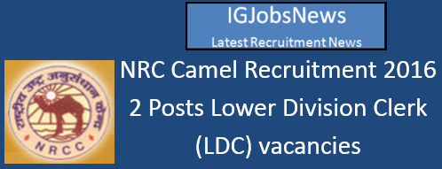 NRC Camel Recruitment 2016