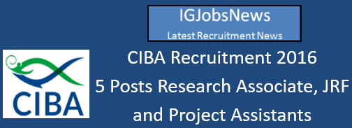 CIBA Recruitment July August 2016