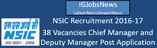 NSIC Recruitment 2016-17 - 38 Vacancies Cheif Manager and Deputy Manager Post Application Format